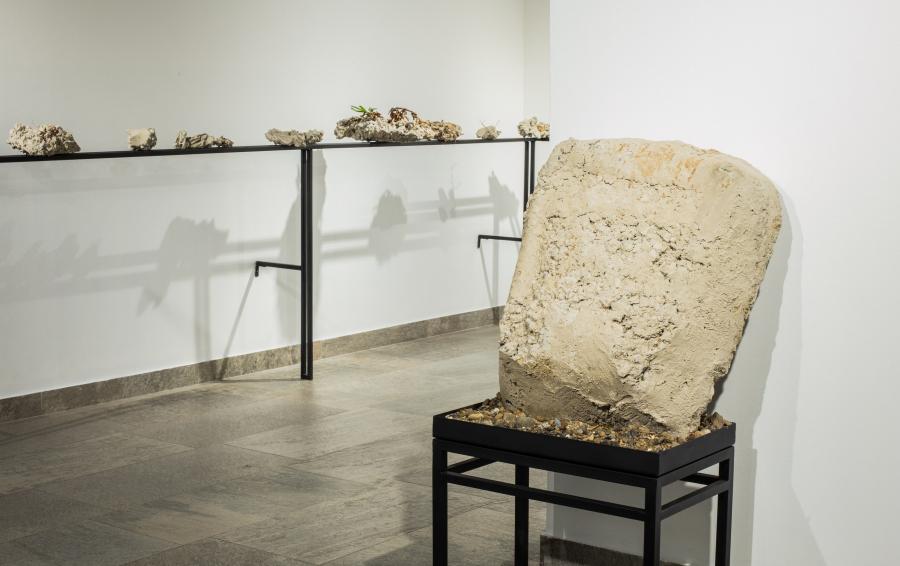 Diego Santa María, Borde costero, 2016, cemento, piedras, plantas y tierra sobre estructura metálica. Medidas variables. Foto: Juan Alemparte. Cortesía: Galería NAC