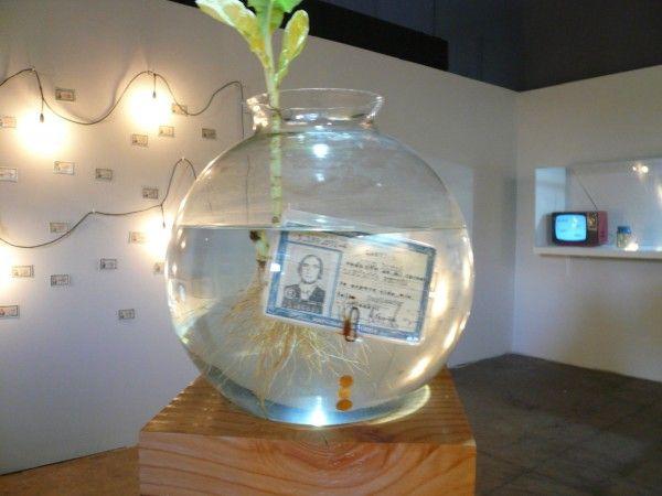 Juan-Pablo-Langlois-El-Carné-Sentimental-1980-carné-intervenido-dentro-de-un-bolo-de-vidrio-con-agua-y-planta-sobre-plinto-de-cholguán-Colección-del-artista-detalle-600x450