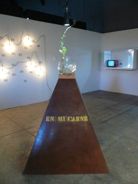 Juan-Pablo-Langlois-El-Carné-sentimental-1980-carné-intervenido-debtro-de-un-bolo-de-vidrio-con-agua-y-planta-sobre-plinto-de-cholguán-Colección-del-artista-450x600