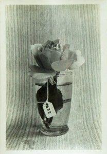 Roberto Obregón, Crónica de una rosa (N°32), ca. 1976, fotografía B/N, 10,9 x 7,2 cm. Cortesía del artista