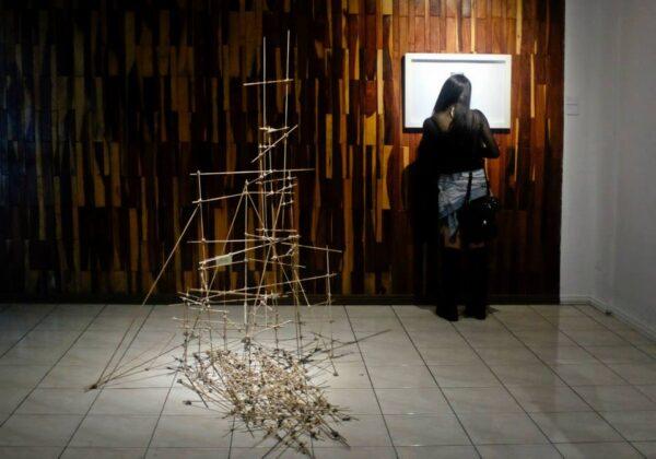 11390200Esteban Piedra, Sin título, 2014. Parte de la exhibición Babel en Terminal, San José de Costa Rica. Cortesía: Terminal _1659845397578396_7840019813630858415_n