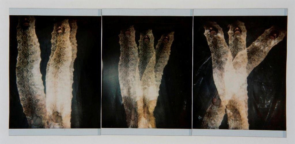 Francisco Toledo, Autorretrato 24, 1995, Polaroid manipulada,10,16 x 20,6 cm. Cortesía: Galería Juan Martín-Galería Quetzalli | Ciudad de México - Oaxaca