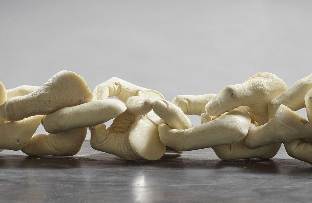 Iván Argote, Sírvete de mi, 2016, 100 manos de poliuretano, 4 mts. Vista de la exposición en Proyecto AMIL. Foto: Juan Pablo Murrugarra