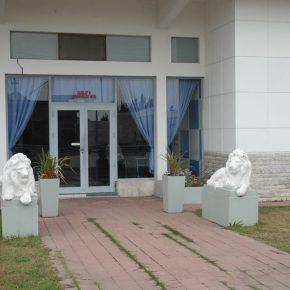 OCUPACIONES RARAS. UN PROYECTO DE LA AGENCIA DE ASUNTOS (SUB) TROPICALES PARA LA GALERÍA GABRIELA MI...