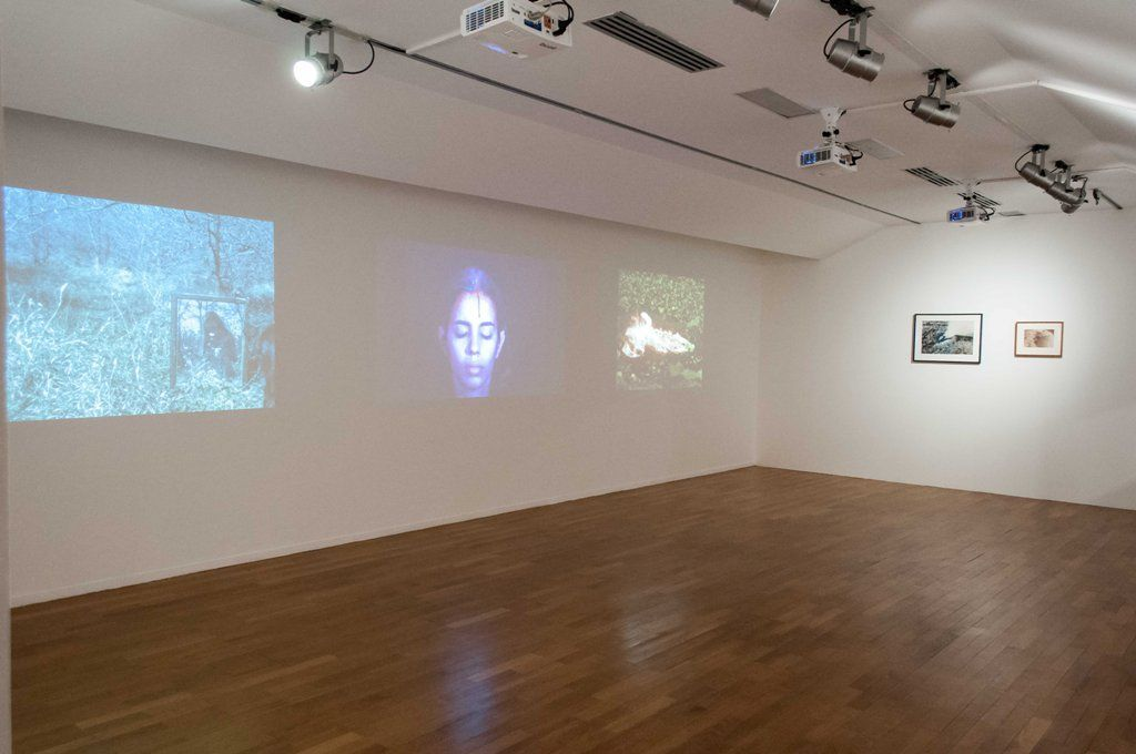 Ana Mendieta, de izq. a der.: Mirage, 1974; Sweating Blood, 1973; Volcano, Silueta Series, 1978. Foto: Annamaria La Mastra. Cortesía: PAC