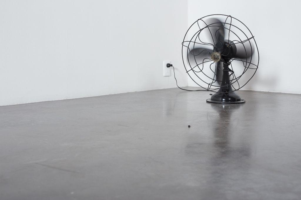 Wilfredo Prieto, Pelo danzando con pasa, 2015, ventilador, pelo y pasa. Cortesía: kurimanzutto