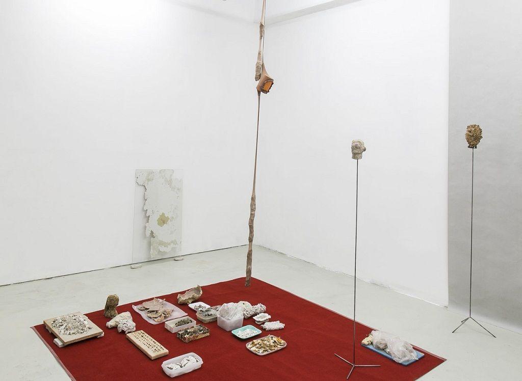 Cinthia de Levie. Quién Necesita la Piel. Vista de la muestra. Big Sur Galería, Buenos Aires, Argentina. Foto cortesía de la artista.