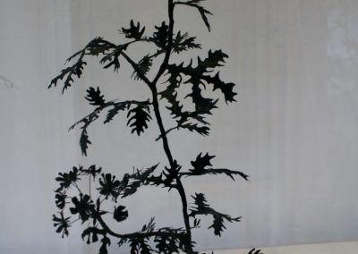 Juana Córdova, Plantas venenosas, 2011, papel, alambre, tinta, dimensiones variables. Vista de la exposición A la Orilla, en el Museo Municipal de Arte Moderno (MMAM) de Cuenca, Ecuador, 2016. Foto: Alejandra Villasmil