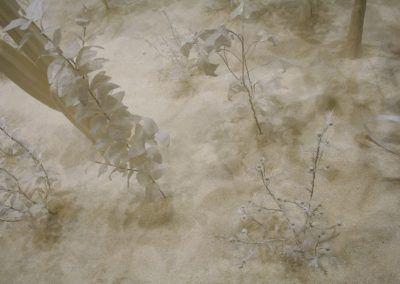 Juana Córdova, Botica, 2007, papel mache, alambre y morocho, dimensiones variables. Vista de la exposición en el Museo Municipal de Arte Moderno (MMAM) de Cuenca, Ecuador, 2016. Foto: Alejandra Villasmil