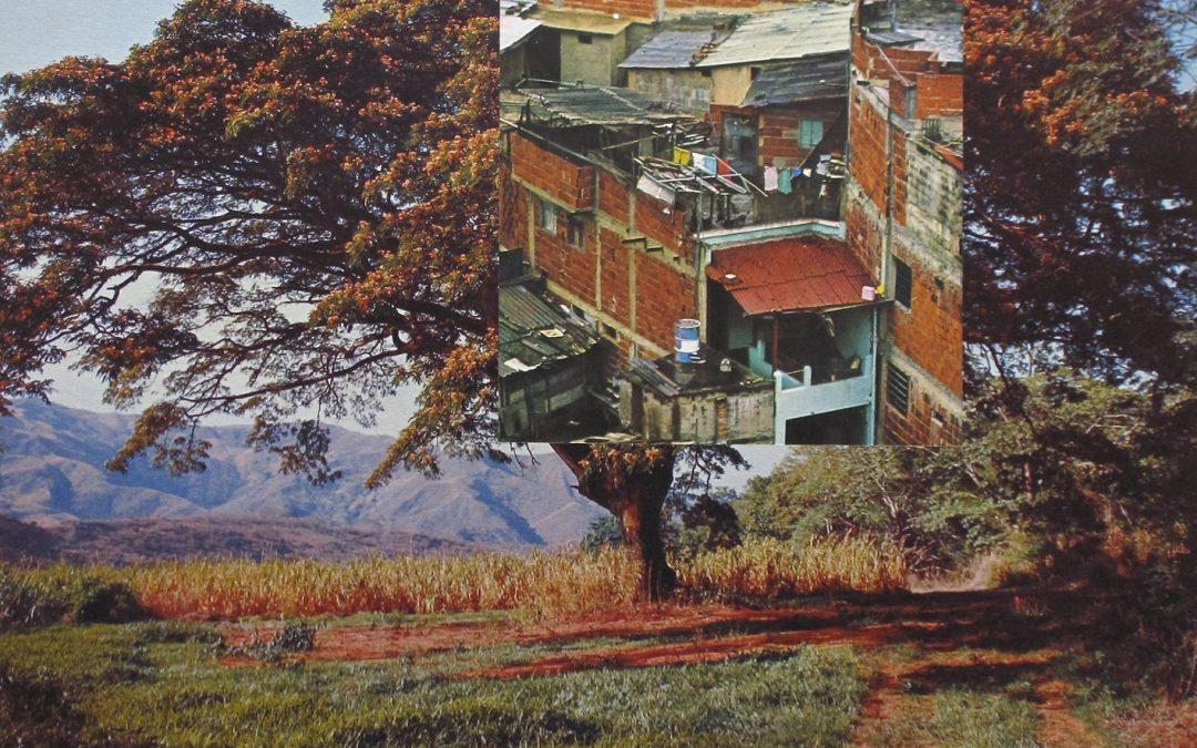 PANORÁMICA. ARTE EMERGENTE EN VENEZUELA. 2000-2012