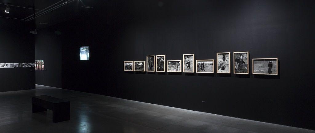 """María Isabel Rueda. Vista de la serie """"Vampiros en la Sabana"""" exposición Oscuro diario, Mamm. Cortesía de la artista."""