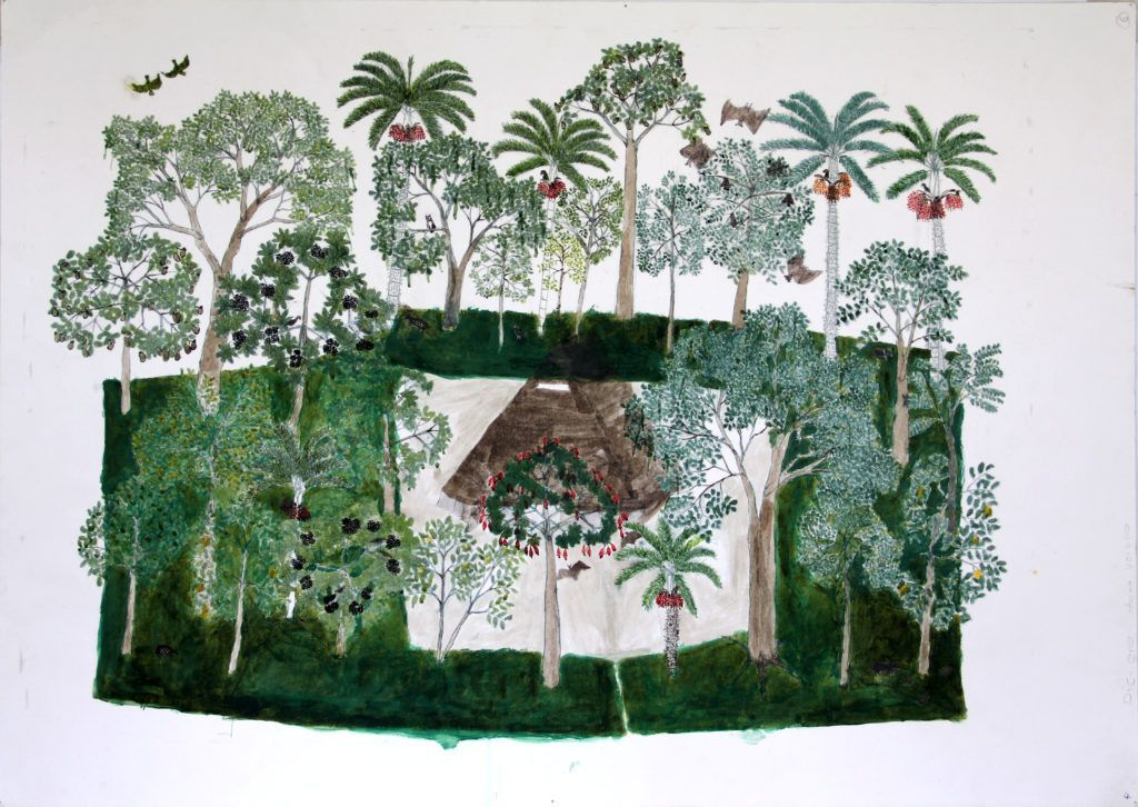 """Abel Rodríguez, dibujo de la serie """"The Cycle of the Maloca Plants; Studies of Principal Trees in the Forest; Trees with Legends; The Cultivated Plants of the Center People; Drawings of Pineapples; Drawings of Cassavas and Other Tubers,"""" c. 2009. Cortesía: Tropenbos International, Colombia CAP."""