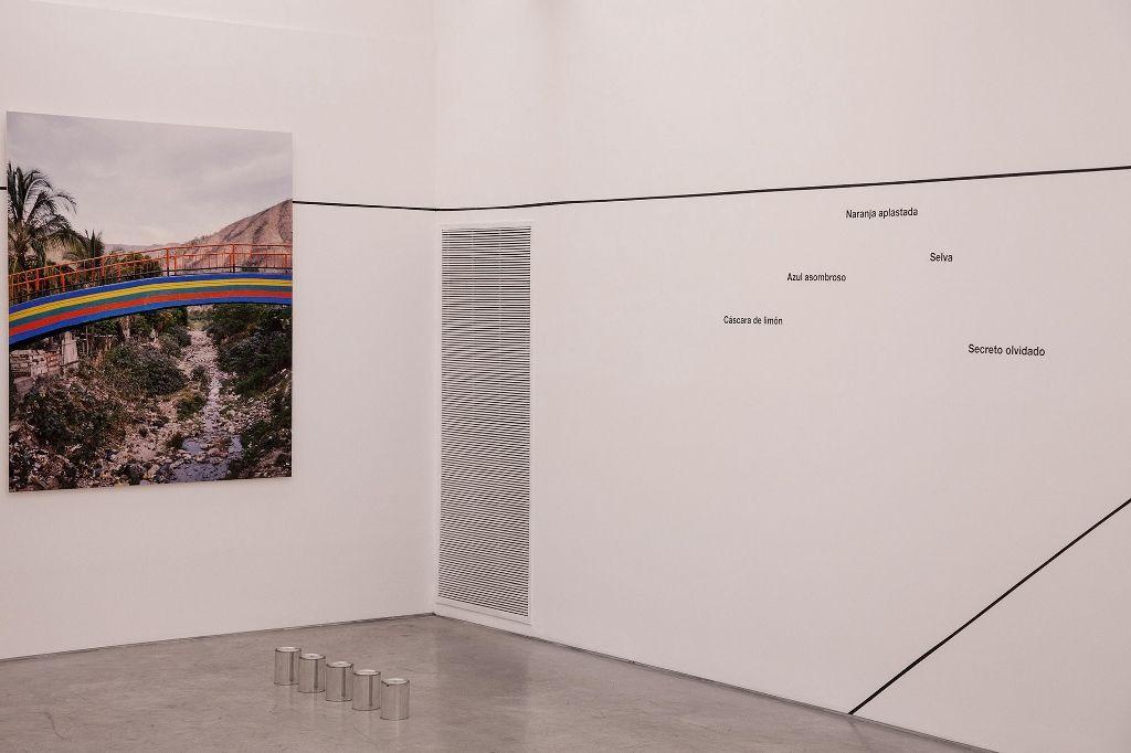 Andrés Marroquín Winkelmann. El nombre de un color promete. Parte de la muestra. FoLa, Buenos Aires, 2016. Imagen cortesía del artista
