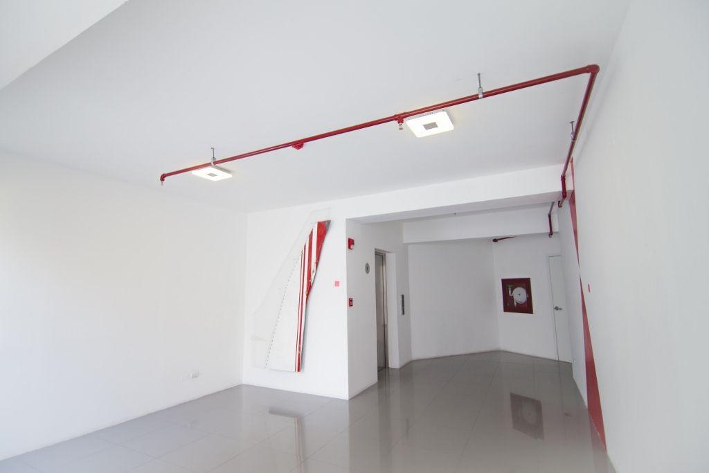 Augusto Ballardo. Plumaje - El esplendor del vuelo. Vista de la muestra. Galería Impakto, Perú. 2016. Foto cortesía del artista.