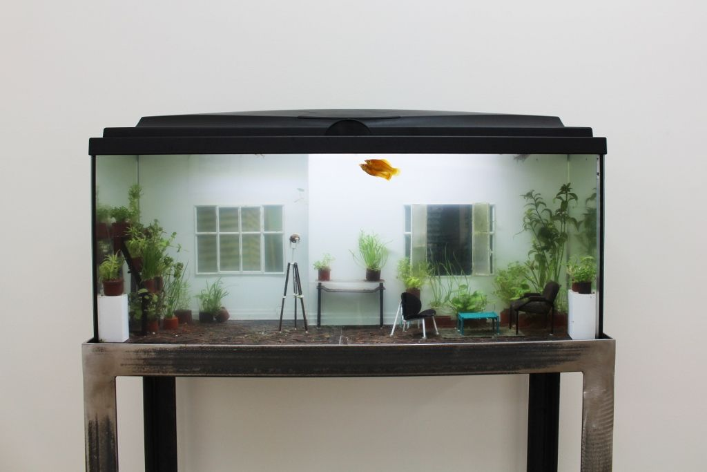 Rodrigo Arteaga, Öekologie, 2016, acuario con plantas y peces vivos, objetos miniatura, 80 x 30 x 40 cm. Cortesía de Sobering Galerie