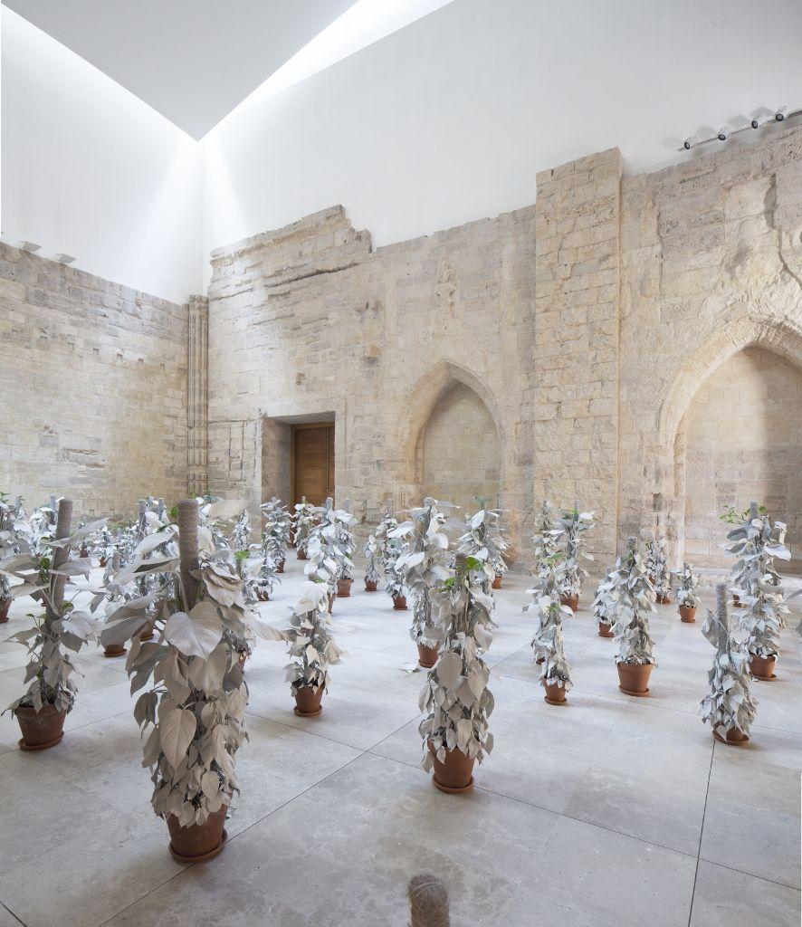 Marlon de Azambuja. Herencia. Vista de la muestra. Patio Herreriano Museo de arte contemporáneo español, 2016. Foto cortesía del artista.