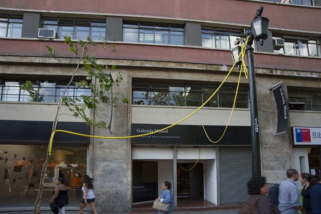 Carlos Silva, La hidratación del paisaje chileno. Intervención en la Galería Gabriela Mistral, Santiago, 2012-2013. Una manguera conectada al lavamanos del baño recorre hacia el exterior de la galería, regando por goteo un árbol de la Alameda. Foto cortesía del artista