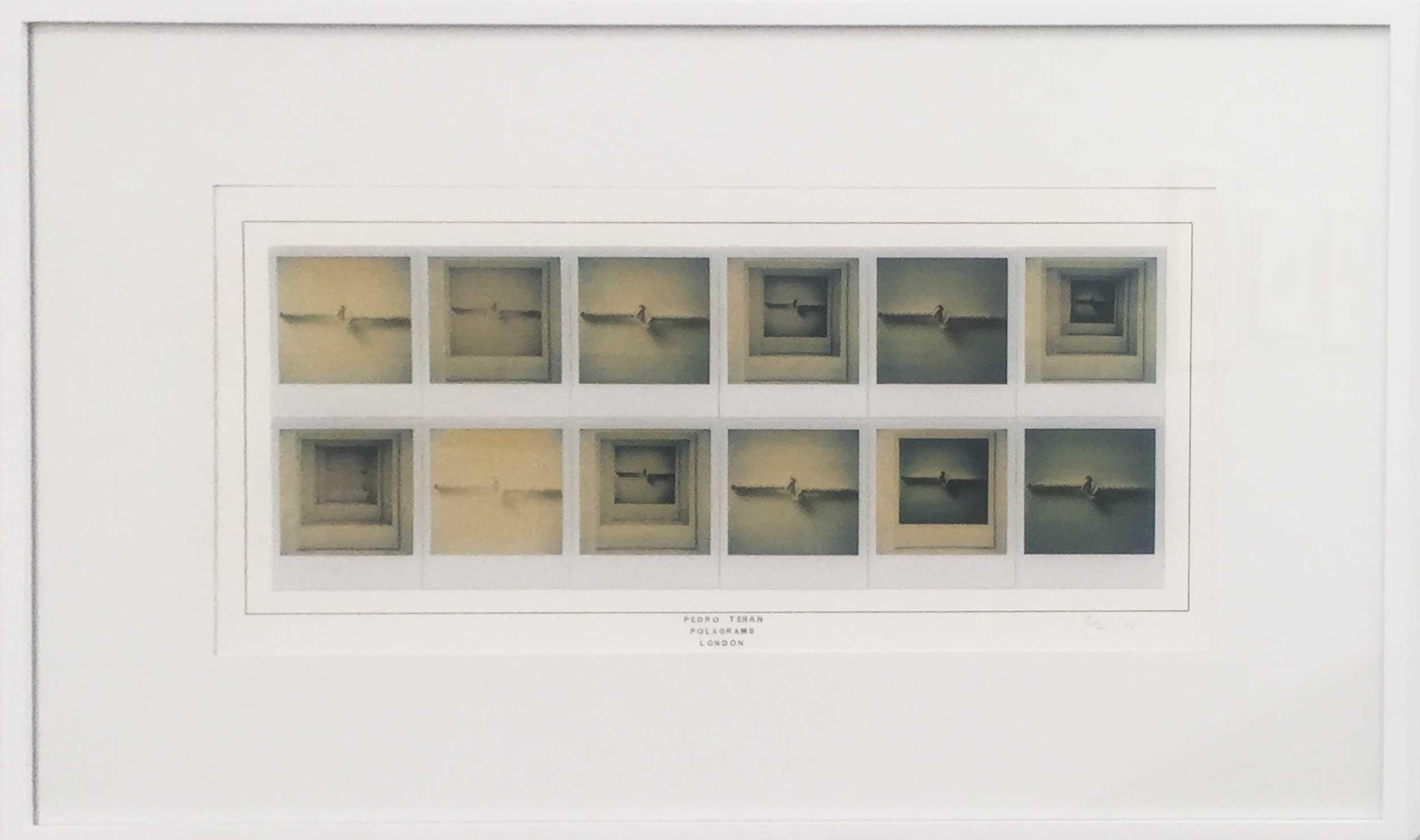 Pedro Terán, Pologramas (loop), 1977. Polaroid. Vintage. 51 x 81.5 cm. Cortesía: Instituto de Visión, Bogotá, 2016
