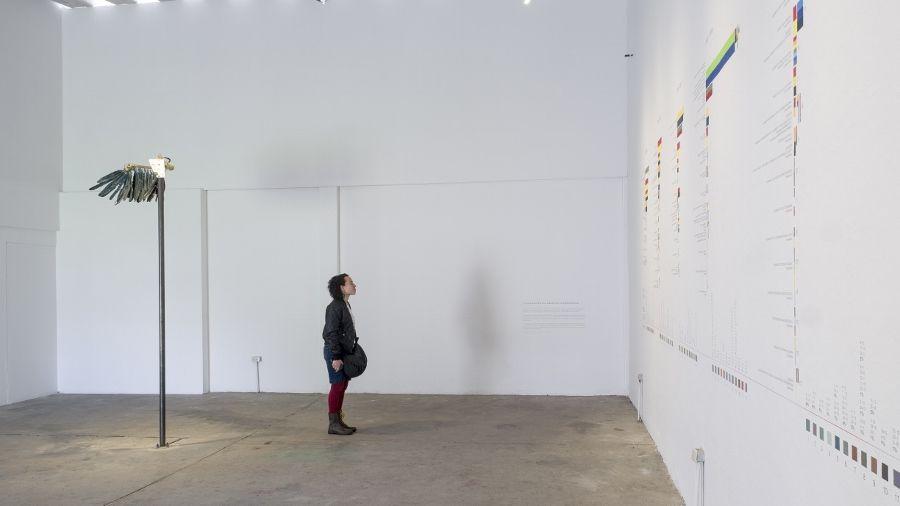 Juan Carlos León (Guayaquil, Ecuador, 1984. Vive y trabaja en Salasaca, Ecuador), Estrategias para encontrar el color de la democracia, 2016, instalación multimedia con modelo de ala de un cóndor, pigmentos y objetos diversos; dimensiones variables. Cedida por el artista y comisariada por la Bienal.