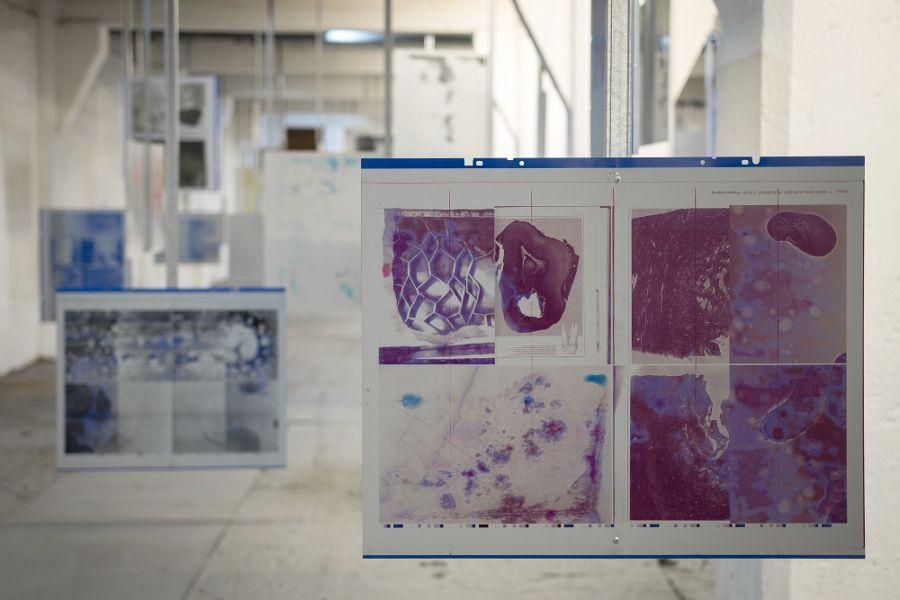 Adolfo Bimer, 271 (Revisitado), 2017. 72 Planchas de impresión offset del libro ZOOM, metalcon y tornillos autoperforantes. Dimensiones variables. Fotografía: Felipe Ugalde. Cortesía del artista.