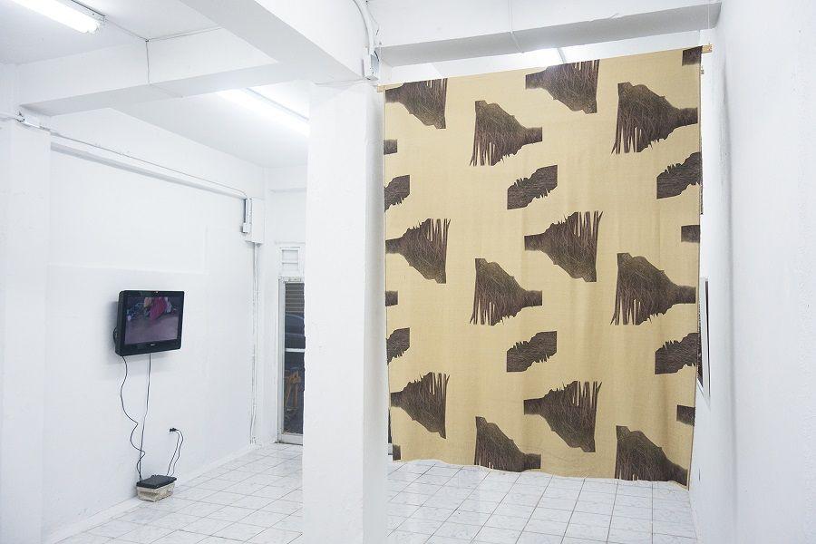 """Jonathan Harker y Donna Conlon, Under the Rug (Bajo la alfombra), 2015, Video 2:46 min; Luisa Brandelli, Estampa (Caña de Azucar), 2017. Estampa digital sobre tejido de lino, 60"""" x 72"""". Cortesía: Km 0.2"""