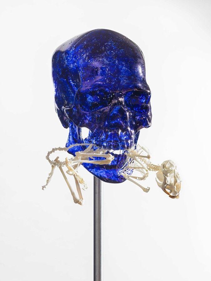 Jan Fabre, Calavera con chinchilla (2017), cristal de Murano, esqueleto de chinchilla, tinta de bolígrafo Bic, acero inoxidable, 52,8 x 22,3 x 22,3 cm Fotografía: Pat Verbruggen. Cortesía del artista