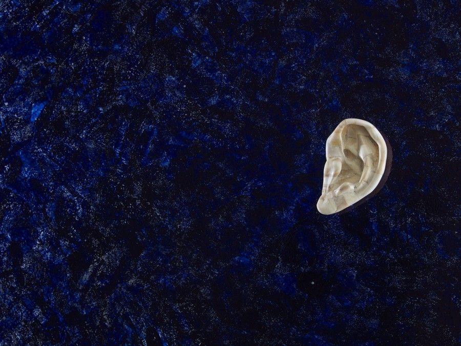 Jan Fabre, Detalle de Sin título (Oreja de Hueso) (1988), 180 cm x 250 cm, vidrio, huesos humanos, tinta de bolígrafo Bic. Fotografía: Pat Verbruggen. Cortesía del artista