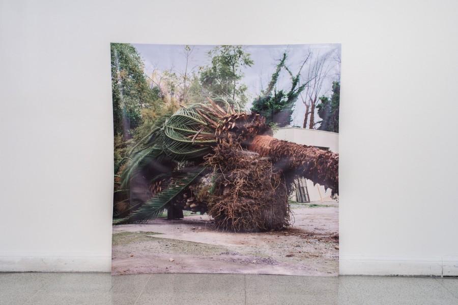 """Vista de la exposición """"Material de derribo"""", de Tarix Sepúlveda, en Galería BECH, Santiago de Chile, 2017. Foto cortesía de BECH."""