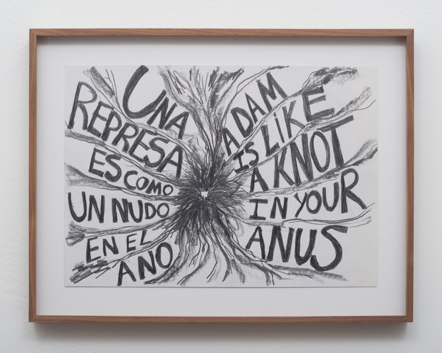 """Carolina Caycedo, """"Damn Knot Anus/Nudo represa ano"""", 2016, lápiz sobre papel. Cortesía de la artista y Commonwealth and Council, Los Ángeles. Foto: Rubén Díaz"""