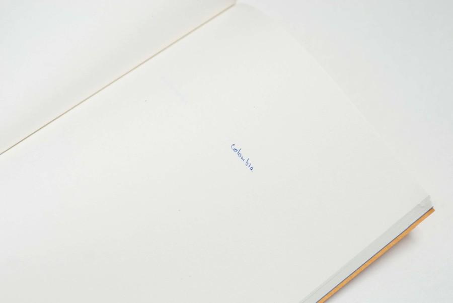 Nicholas Jackson, Solicitud de Residencia, 2015, libro de artista. Tres libros de 21 x 14 cm, 60 páginas c/u aprox. / Caja 21 x 14 x 1,8 cm. Impresión offset tradicional 4/4. Distintos papeles. 100 ejemplares.