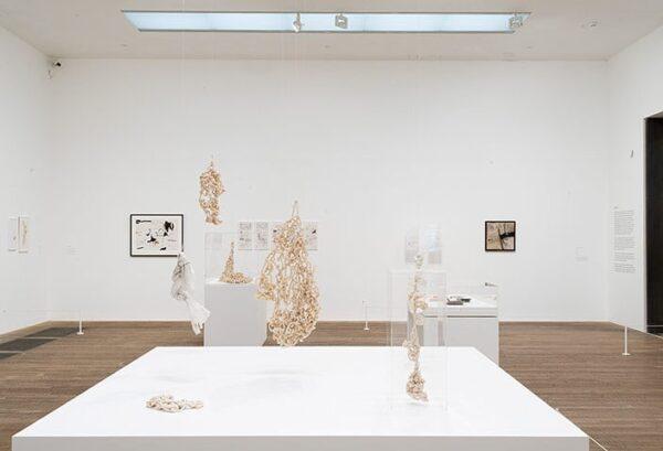 Vista de la exposición de Mira Schendel en Tate Modern, Londres, 2014. Cortesía: Tate