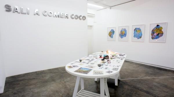 Vista la exposición Salí a comer coco, de Marco Montiel-Soto, 2014, en Carmen Araujo Arte, Caracas. Foto © Gabriel Osorio