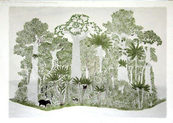 Abel Rodríguez, Ciclo Anual del Bosque de La Vega, 2009-10. Tinta y acuarela sobre impresión digital sobre papel. 1 de 12 dibujos. Cortesía de Tropenbos International, Colombia