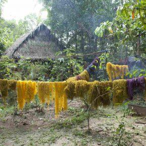 Susana Mejía, Fibras de fique teñidas secándose en el Amazonas. Proceso para la obra Color Amazonia, 2006-2013. Cortesía de la artista