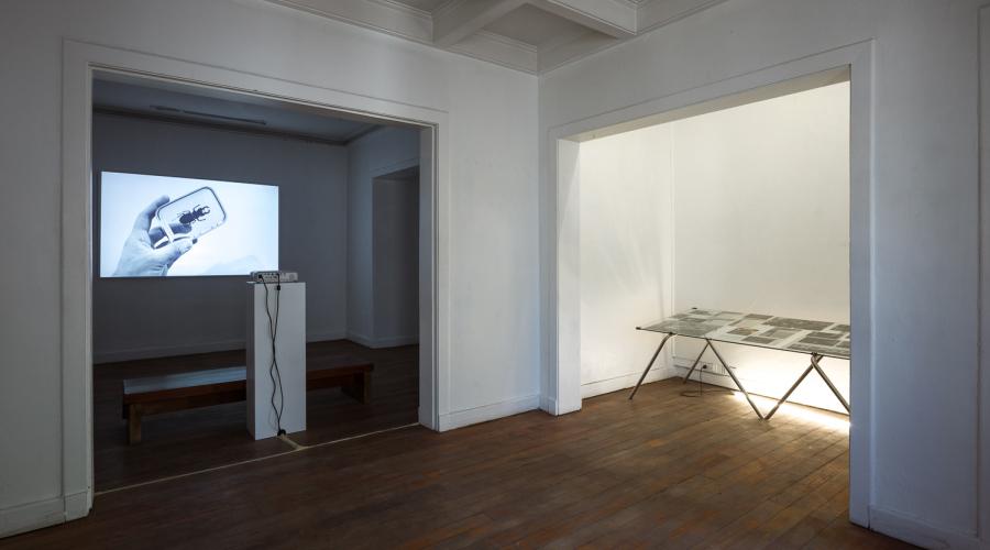 Vista de la exposición de Tris Vonna-Michell en Local Arte Contemporáneo, Santiago de Chile, 2017. Foto: Felipe Ugalde