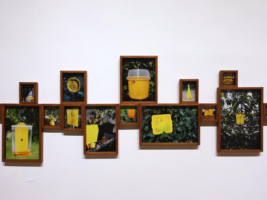 """Trampas Cromáticas, de Ilich Castillo. Vista de la exposición """"Objeto Diferido"""",en el Centro de Arte Contemporáneo (CAC), Quito, 2017-2018. Cortesía del artista"""