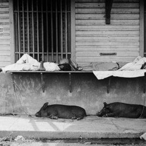 Pierre Verger, de la serie Dorminhocos. Pasay, Filipinas, 1937-1938. Foto cortesía de CAIXA Cultural Río de Janeiro