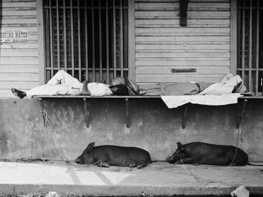 EXPOSICIÓN EN BRASIL REÚNE FOTOS INÉDITAS DE PIERRE VERGER