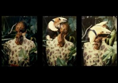 Camouflage, 1980 2015, de Anna Bella Geiger, en Aural Galería de Arte