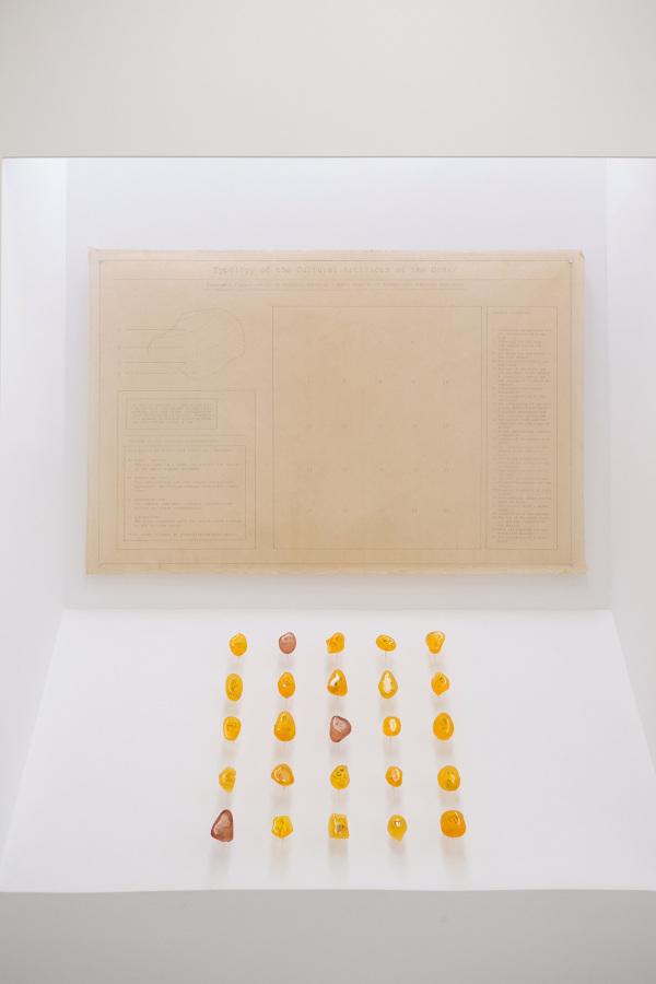 "Matías Armendaris,""The Amber Archive"". Cortesía del artista"