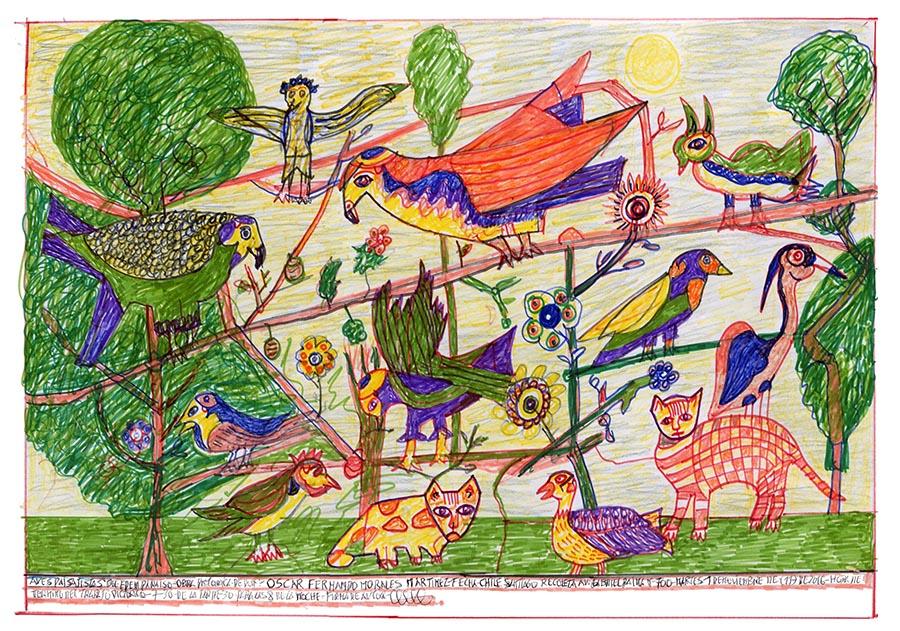 Aves paisajísticas del Edén Paraíso (2016) de Oscar Morales, parte de la muestra Radio Estación Locura en el Museo de Artes Visuales, Santiago de Chile. Foto: cortesía MAVI.