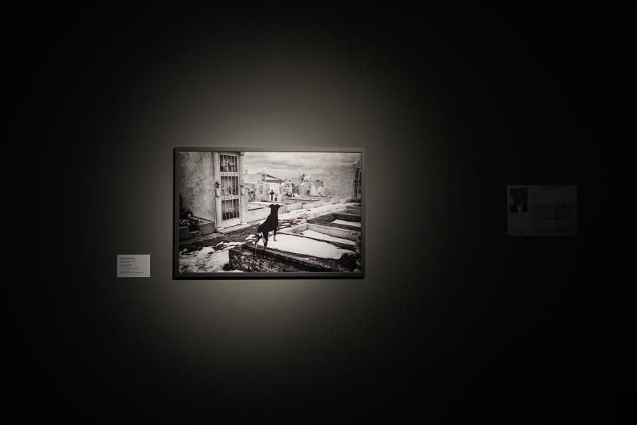 Rodrigo Gómez, Rovira, Tierra de fuego, 2011, 60 x 90 cm (formato fotografía; también disponible en formato video). Cortesía del artista