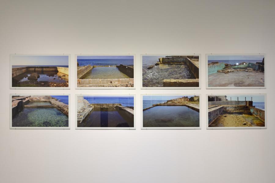 Celia-Yunior, Dienteperro, 2008-2017. Serie de 8 fotografías. Impresión digital