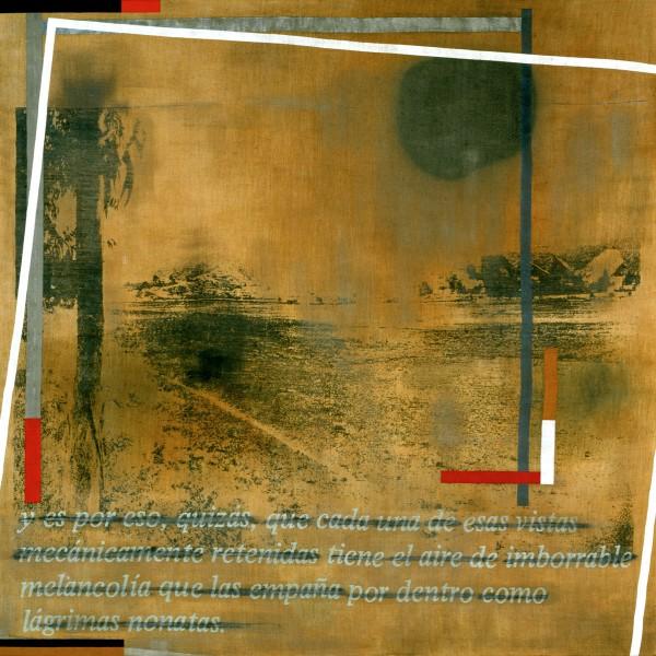 Eugenio Dittborn, Lágrimas nonatas, 1981, acrílico y serigrafía sobre tela. Obsequio de Barbara Duncan, 1991
