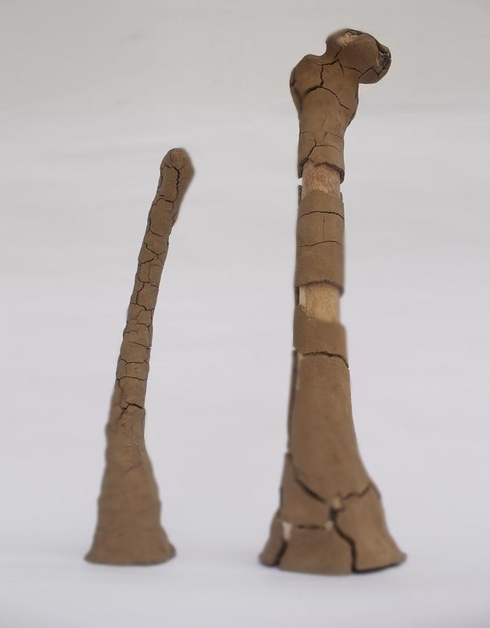 Melissa Guevara, No es esto, 2009, huesos humanos y barro. Foto: The Fire Theory © Cortesía de la artista