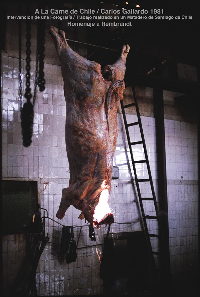 Carlos Gallardo, Homenaje a Rembrandt, 1981, intervención de una fotografía. Cortesía: D21