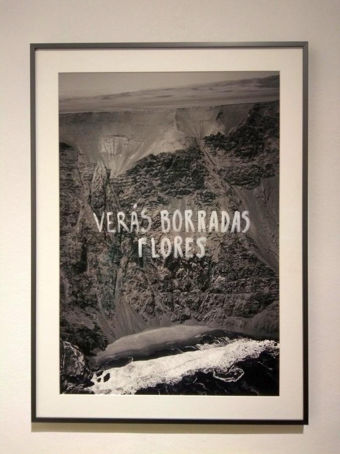 """Raúl Zurita, Verás borradas flores (de la serie """"Verás un mar de piedras""""), 2015, marcador blanco sobre fotografía, 73 x 53 cm. Colección Rocío Chávez. Foto: Alejandra Villasmil"""