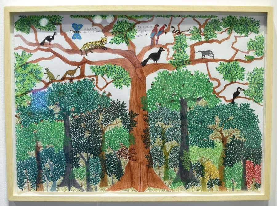 Abel Rodríguez, Árbol Natural, 2018, acrílico sobre papel, 52.5 x 72.5 cm. Adquirida a Instituto de Visión (Bogotá) por Museo Lucy Mattos. Foto cortesía de arteBA Fundación