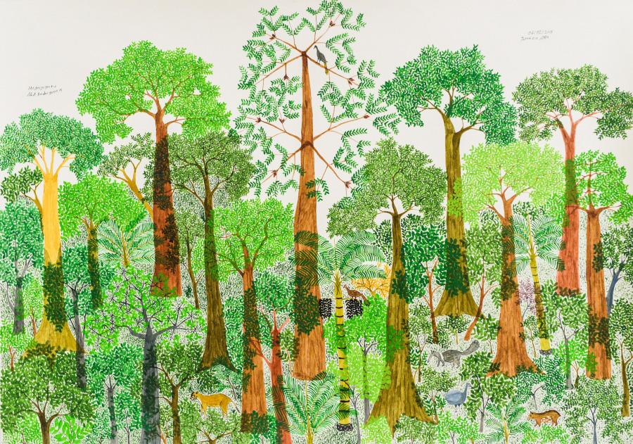 Abel Rodríguez, Terraza Alta, 2018, dibujo sobre papel, 71 x 102 cm. Cortesía: Instituto de Visión, Bogotá