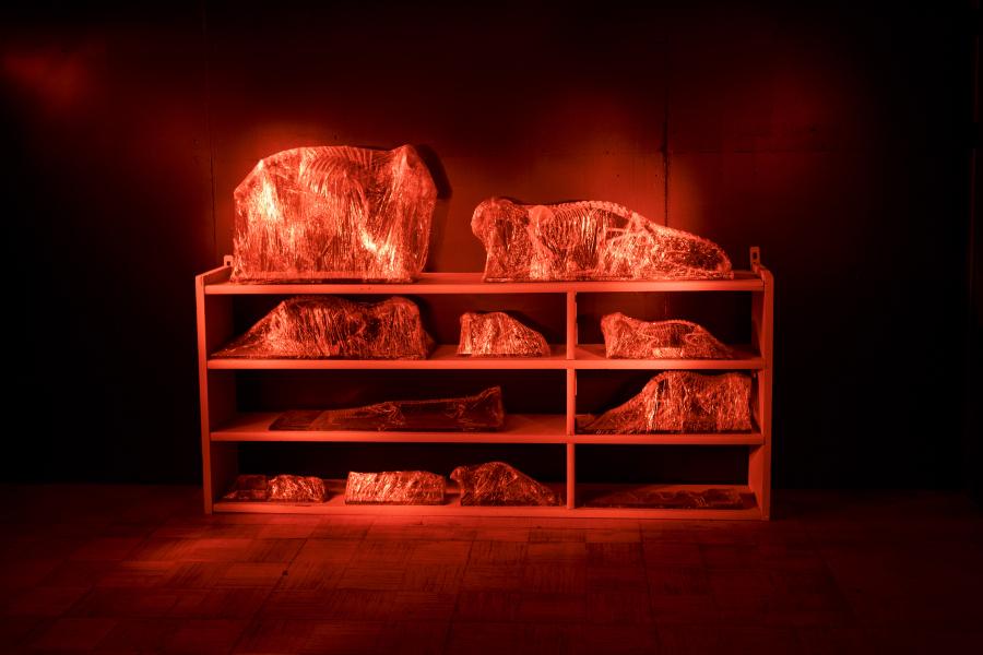 Mark Dion, A Tour of The Dark Museum, 2018 (detalle), instalación site-specific en materiales mixtos, linternas. Dimensiones variables. Comisionada por la Primera Bienal de Riga (RIBOCA). Cortesía del artista y Waldburger Wouters, Bruselas. Foto: Andrejs Strokins